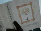 Once Upon a Time (Novel)