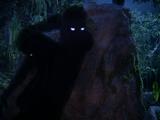 Shadows (Species)