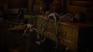 721Skeletons