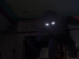 Pan's Shadow