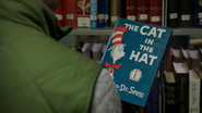 408TheCatInTheHat