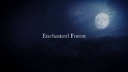 621EnchantedForest