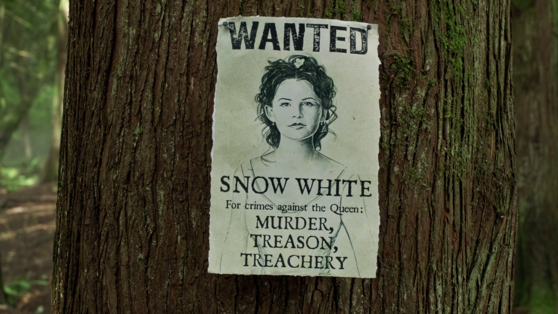 Wanted Posters Once Upon A Time Wiki Fandom Powered By Wikia