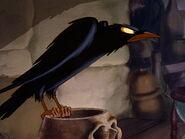 DSnowWhite...Raven