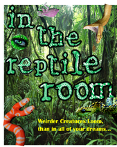 In the Reptile Room