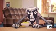 O Primata Foto 11