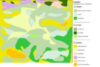 Plattegrondje eind september -gras+planten