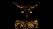 Owl trailer