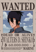 Walters D. Shinko wanted