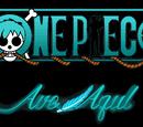 Piratas del Ave Azul/Historia