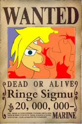 Wanted Ringe