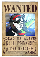 Wanted Erica
