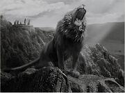 Kuro lion