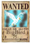 Bird Wanted