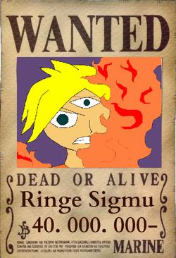 Ringe Wanted 2