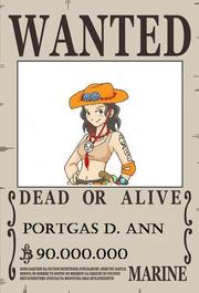 Ann se busca