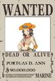 Ann se busca.png