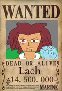 Lach Wanted
