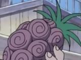 Fruta Shizen Shizen