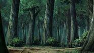 Bosque Guiri