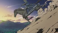 Stomp caballo