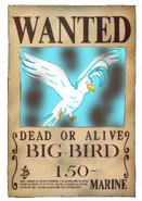Big Bird Wanted2