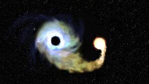 Taijitu Black Hole