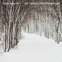 Liam Payne (24)