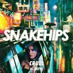 Snakehips-feat.-Zayn-–-Cruel