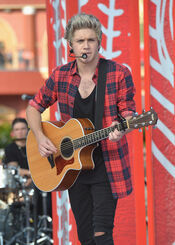 Niall The Today Show 2014