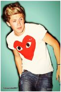 Niall-Horan-2013-one-direction-33260284-1001-1500