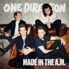 Made In The AM cover