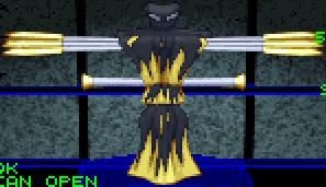 Raven pyros