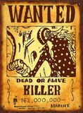 Wanted Killer