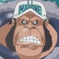 Goril·la portrait