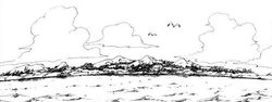Illes Gecko