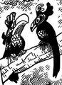 Ocells de l'Est & Oest