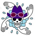 Robin Timeskip Jolly Roger