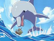 Dofí gegant