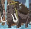 Zou Zou no Mi model mamut