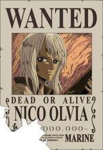 Cartell Nico Olvia