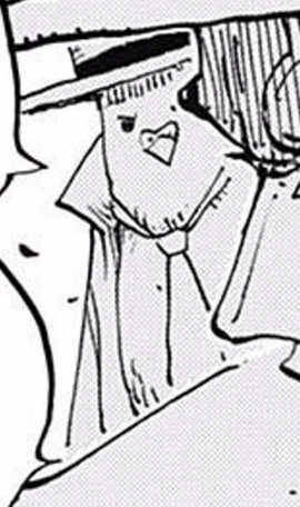 Hattori Manga Post Timeskip Infobox