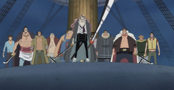 Pirati Aracnovortice
