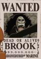 Brook Avis de Recherche Vivant
