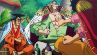 Roger Spoke With Whitebeard and Oden