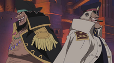 Blackbeard and Shiryu