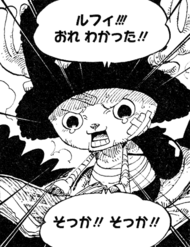 Chopper's Reaction to Luffy's News