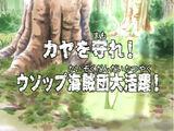 Kaya wo mamore! Usopp Kaizoku-dan Daikatsuyaku!