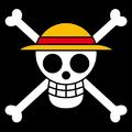 Piratas de Sombrero de Paja portrait