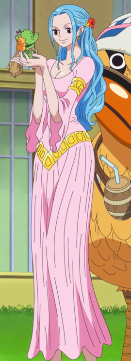 Nefertari Vivi Anime Post Timeskip Infobox